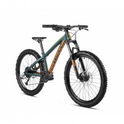 DARTMOOR Hornet Junior 24″